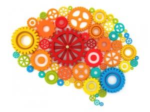 Focus Supplements Improve Concentration