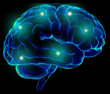 Brainsmart Brain Supplements Increase Neurotransmitter Activity