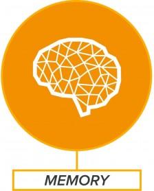 BrainSmart Memory Boosts Memory Naturally